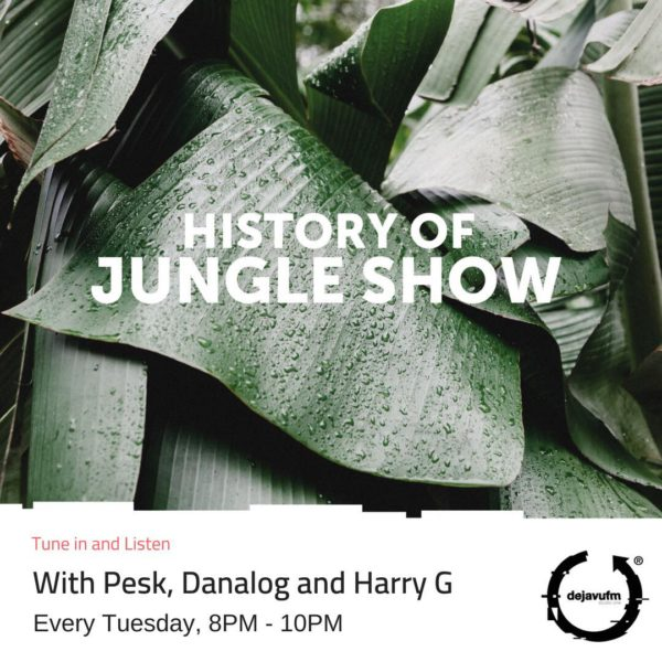The History of Jungle Show – Episode 102 – 100% Vinyl Special